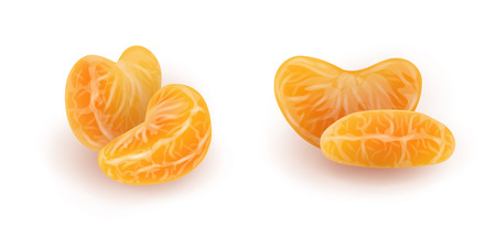 Set of realistic mandarin or tangerine slices. Isolated peeled citrus segments on white background. Orange sections. Photorealistic vector illustration for food packaging.