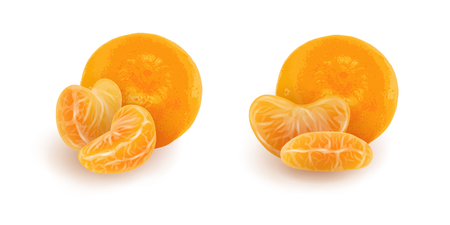 Set of realistic mandarin or tangerine slices. Isolated peeled citrus segments with whole fruit on white background. Orange sections. Photorealistic vector illustration for food packaging.