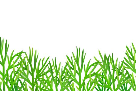 Seamless dill border. Fresh green herb repeatable horizontal pattern. Food illustration isolated on white background. Package design in 3d realistic style