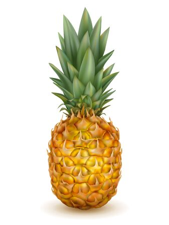 Realistic ripe pineapple isolated on a white background. 3d vector illustration. Sweet tropical fruit icon design