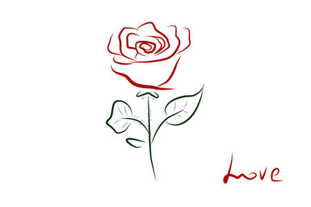 Red rose on a white background. Vector. Rose in simple lines. Minimalistic rose. Romantic illustration Ilustração