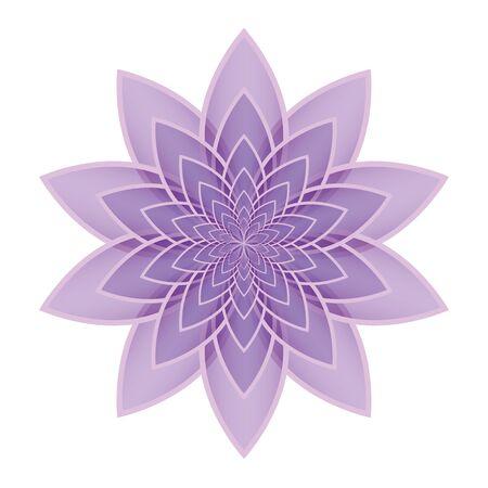 Pink Lotus Blume Auf Einem Weißen Hintergrund. Isolierten Objekt ...