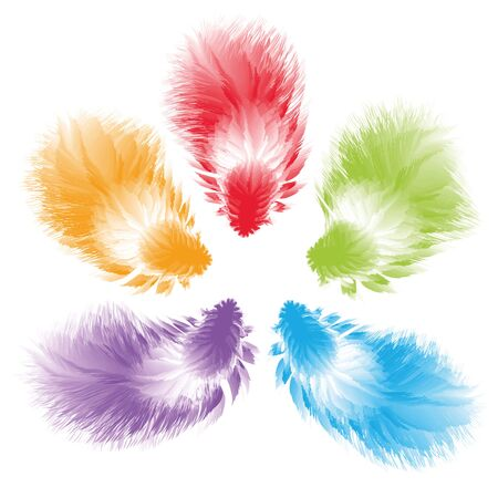 isolated objects: Five multi-colored feathers on a white background. Vector, isolated objects. This file contains the brush allows you to draw fluffy feathers in one motion Illustration