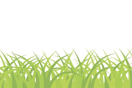 group of objects: Background of green grass. Seamless pattern, empty blank, vector illustration Illustration