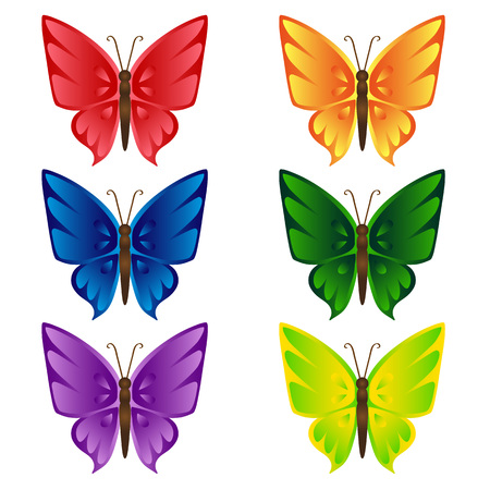 Set of multi-colored butterflies. Isolated objects on white background, vector illustration