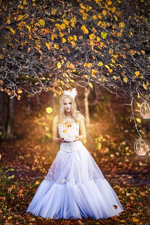 girl in a wedding dress photo