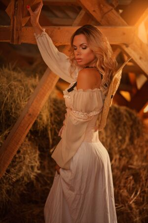 beautiful glamorous girl in a stable on a haystack