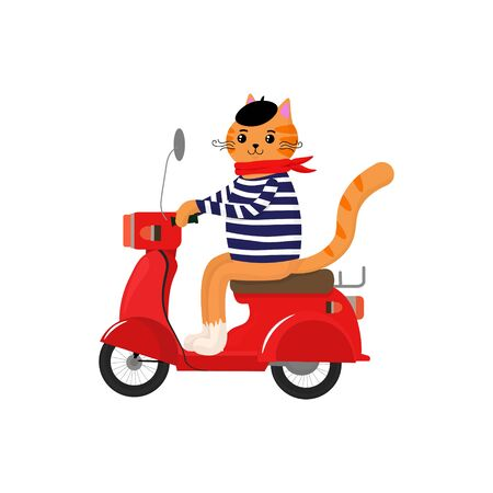 Vector graphics. Cute, funny illustration of a french cat with scooter. Funny character. Cat icon template.  Ilustracja