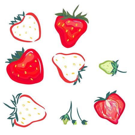 sliced fruit: A vector images of strawberry: red, green little green berries, and cut in half.