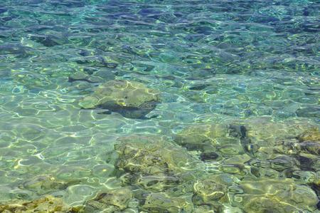 Clear sea water in sunlight
