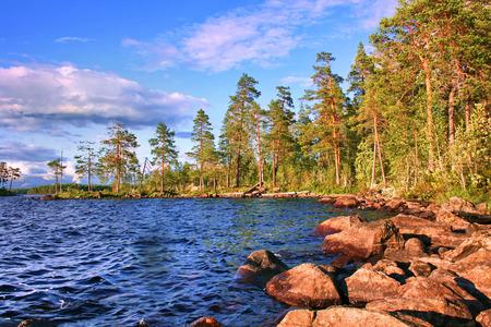 Lanscape with lake and pines Karelia