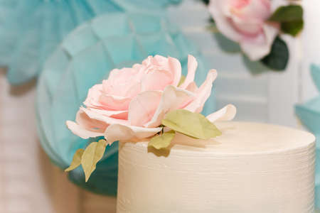 Top of wedding or birthday cake with tender rose flower on festive candy bar background.