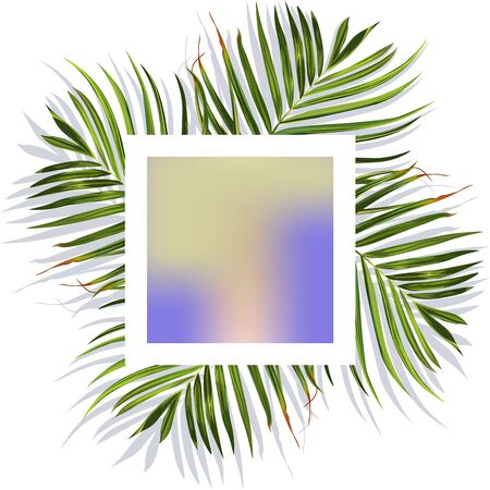 Green tropical leaves banner. Tropical leaves. Jungle background flower and palm. Vector jungle illustration.
