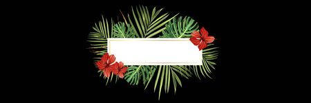 Tropical forest. Jungle background flower and palm. Vector floral illustration. Green tropical forest banner. Illustration