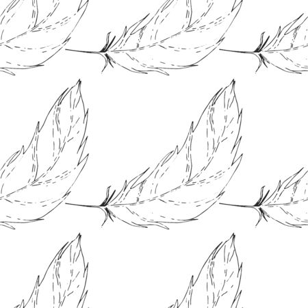 Feather isolated vector seamless pattern. Falling natural feather. Çizim