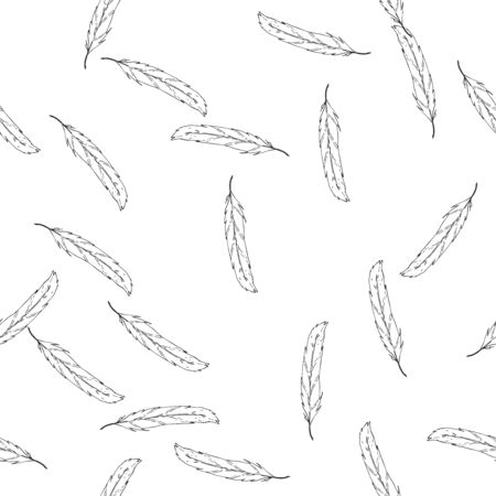 Feather duster hand drawn background. Seamless pattern falling feather. Çizim