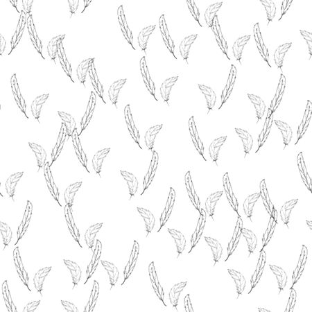 Feather duster hand drawn background. Seamless pattern falling feather. Illustration