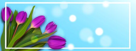 Hello May spring tulip banner. Cute bouquet colorful banner. Womans nice background.