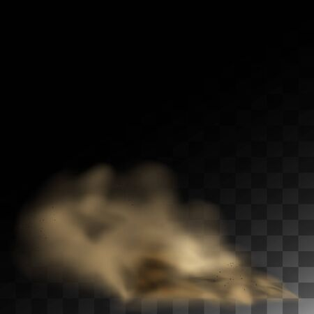 Cigarette smoke, cloud of dust, smell smog tornado. Dust cloud with particles. Realistic vector isolated on background air with dirt..