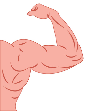 Strong power muscle arms vector illustration Illustration