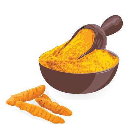 Turmeric roots and powderin in a bowl on a white background vector illustration