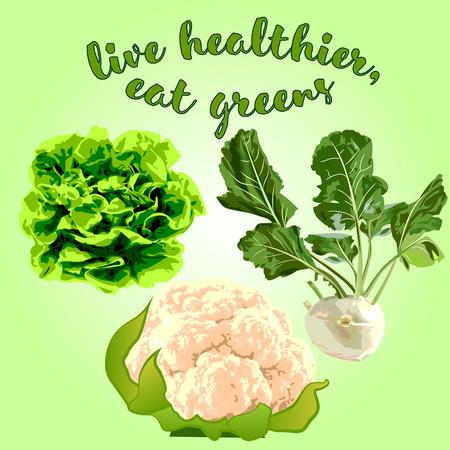 Healthy vegetables for good health vector illustration Illusztráció