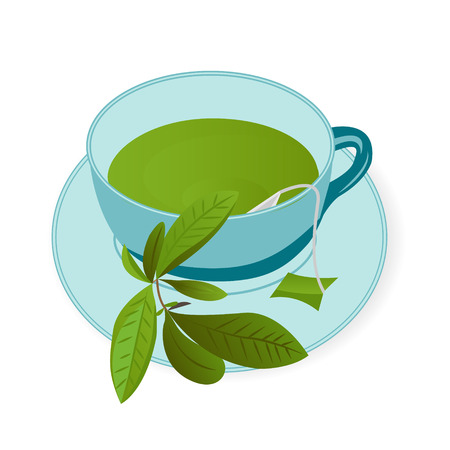A cup ofGreen tea vector illustration on a white background