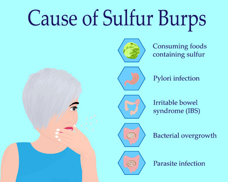 Causes of Sulfur Burps vector illustration