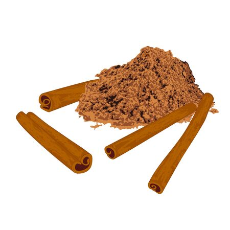 Cinnamon sticks and powder spice vector illustration on a white background