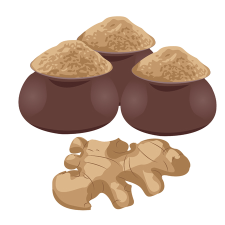 Ginger root and ginger powder in jugs vector illustration.