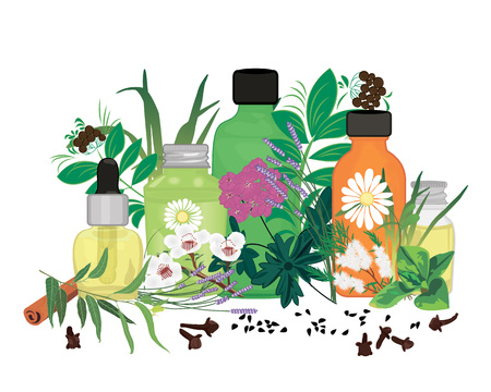 Set of essential oils vector illustration Aromatherapy
