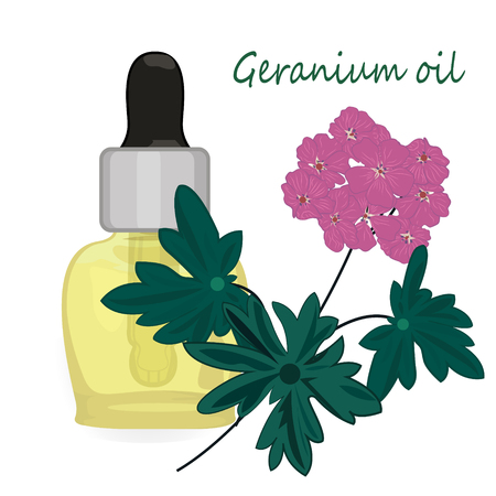 Geranium essential oil vector illustration Aromatherapy Health care