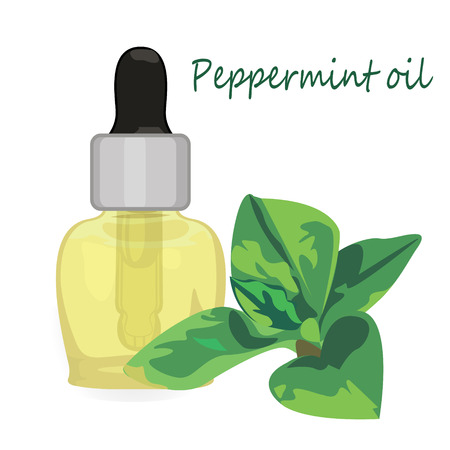 Peppermint essential oil vector illustration Aromatherapy Stock Illustratie