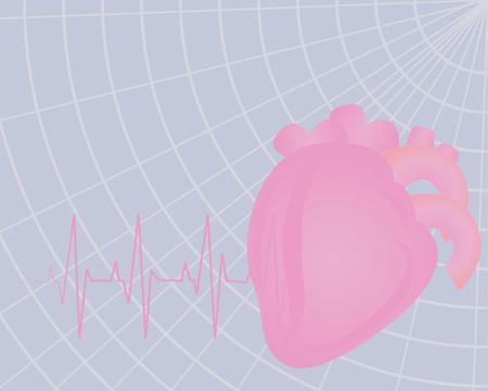 Heart beating. Electrocardiogram colorful drawing medical  vector illustration Illustration