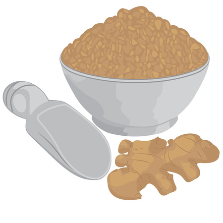 Ginger root and ginger powder in a bowl vector illustration on a white background isolated