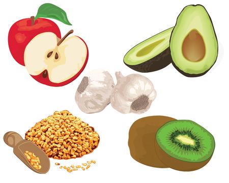 Foods to reduce cholesterol level. garlic, apple, kiwi, fenugreek, avocado  vector illustration on a white background