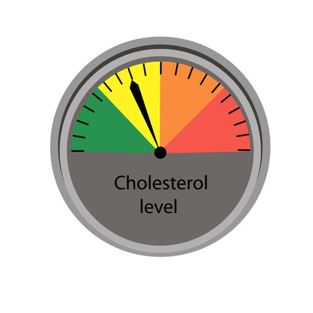 Cholesterol level control  scale vector illustration