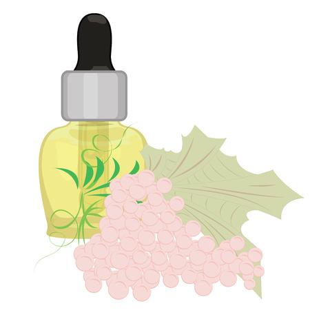 Grape seeds essential oil aromatherapy essence for massage procedures vector illustration