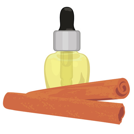 Cinnamon sticks essential oil in a dropper vector illustration on a white background isolated  イラスト・ベクター素材