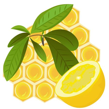 A Brunch of tea, lemon and a honeycomb vector illustration on a white background isolated 写真素材 - 127822340
