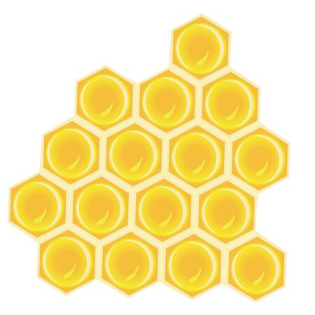 honeycomb vector illustration on a white background isolated