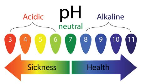 pH level scale showing sickness and health in human body vector infographics  イラスト・ベクター素材
