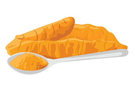 Turmeric roots and powder in in a spoon on a white background vector illustration