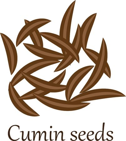 Cumin seeds vector illustration on a white background 写真素材 - 131986168
