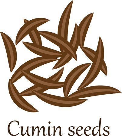 Cumin seeds vector illustration on a white background Illusztráció