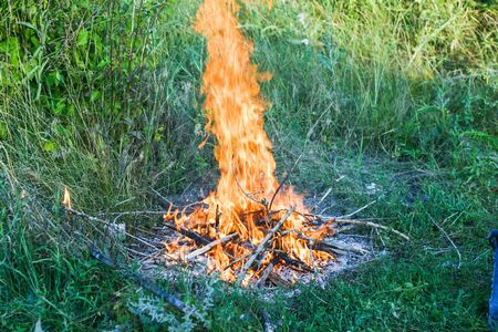 Campfire on a grass in forest on summer day. environment and nature