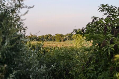 Countryside landscape of eastern Europe 写真素材