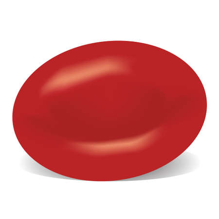 Red blood cell isolated on a white background 일러스트