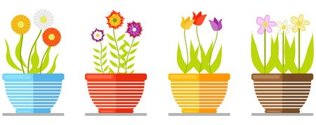 Set of flowers in pot isolated on white background. Set of flowering plants in pots. Floral bouquet. Vector flat design.