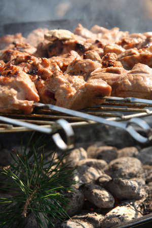 Meat kebabs shashlyk on a barbecue photo